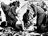 belsen concetration camp, 1945 - Stock Image - C5NFKX