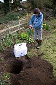 Model released teenage boy digging hole in garden to bury pet cat - Stock Image - BK7T2X