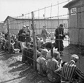 The Liberation of Bergen-belsen Concentration Camp, April 1945 BU4006. - Stock Image - D8RB86