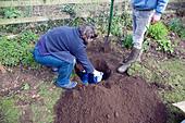 Model released teenage boy digging hole in garden to bury pet cat - Stock Image - BK7GM5