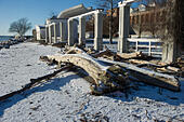 Sassnitz, Germany. 06th Jan, 2017. Fallen trees lie on the beach in the Baltic resort town of Sassnitz, Germany, 06 January 2017. The aftermath of the storm has drawn droves of visitors curuous to inspect the damage to the area. The head of the local district authority Drescher (CDU) warned visitors and locals not to walk too close to the edges of cliffs. Photo: Stefan Sauer/dpa-Zentralbild/dpa/Alamy Live News - Stock Image - HGAEER
