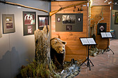 Finland, Kuhmo, Petola Visitor Center. Information about Finland's largest carnivores and preditors, like bear, wolf - Stock Image - B647K9