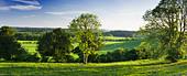 View south from North Downs at Newlands Corner, Surrey, UK - Stock Image - BC2179