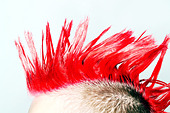 Side view of Punk rocker with red mohican - Stock Image - A9HJ42