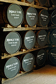 Ireland, County Cork, Old Midleton Distillery, Whiskey barrels - Stock Image - A8H201
